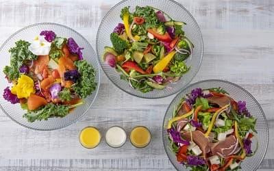ケールとサーモンサラダ、ごろごろ野菜たっぷりTHE 347サラダ、生ハムと豆乳モツァレラチーズのサラダ