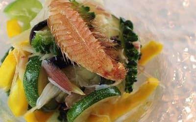 夏野菜の塩揉みと毛蟹のサラダ